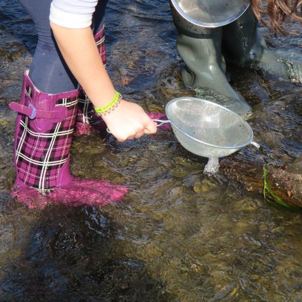 2a WEZ rubber boots